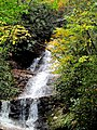 Setrock Creek Falls Black Mountain Campground Pisgah Nat Forest NC 4385 (24096597988).jpg