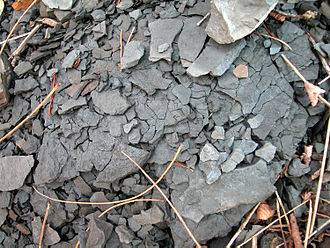 Shale - Weathering shale at a road cut in southeastern Kentucky