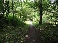 Shay Wood at Slaidburn - geograph.org.uk - 2490136.jpg