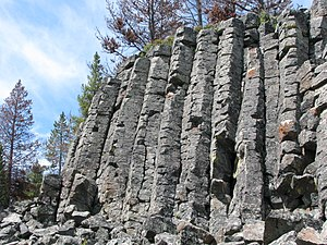 Sheepeater Cliff - Columnar basalt at Sheepeater Cliff