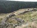 Sheepfold above the Corrwg Fechan - geograph.org.uk - 1000929.jpg