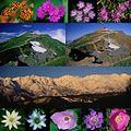 Shiroumadake various 2000-10-7etc.jpg