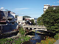Shuzenji river 20110919 C.jpg