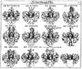Siebmacher 1701-1705 E073.jpg