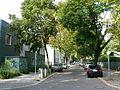 Siemensstadt Lenther Steig.JPG