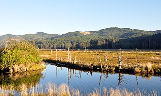 Siletz Bay National Wildlife Refuge - View from U.S. Route 101 near Millport Slough