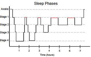 図:レム睡眠