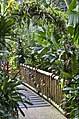 Singapore - Jurong Bird Park-45and (4478196969).jpg