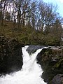 Skelwith Force - geograph.org.uk - 370781.jpg