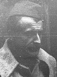 Skender Kulenovic (cropped).jpg