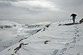 Skiing on Sass Pordoi.jpg