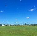 Skydiving at Proserpine.jpg