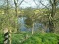 Small Water hole at Blakenhall Farm - geograph.org.uk - 395094.jpg