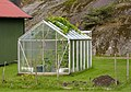 Small greenhouse with grapevines escaping - side view.jpg