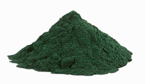 English: Spirulina Powder close shot.