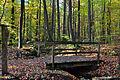 Staatsforst Rantzau - Lorenzen-Brücke im Herbst 02.jpg