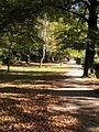 Stadtgarten GN.jpg