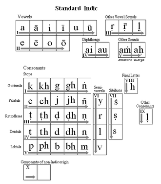 Maldivian writing systems - Standard Indic (IAST). This table is provided as a reference for the position of the letters on all the tables.