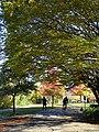 Stanley Park (Inner Harbor) Scene - Vancouver - BC - Canada - 01 (26221868529) (2).jpg