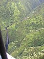 Starr-050405-5940-Aleurites moluccana-habit and waterfalls-Hana coast-Maui (24625336382).jpg