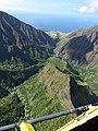 Starr-151005-0213-Aleurites moluccana-aerial view makai-West Maui-Maui (26217073661).jpg