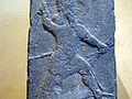Stele of Adad 0236.jpg