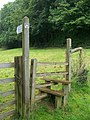 Stile and footpath, Littlehempston - geograph.org.uk - 945211.jpg
