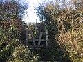 Stile into the lane - geograph.org.uk - 1071511.jpg