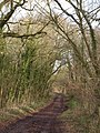 Stone Hill Lane - geograph.org.uk - 1700436.jpg
