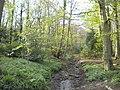 Stream in Ram Wood, Roundhay Park (geograph 5435441).jpg