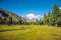 Stunning Rama Meadows.jpg