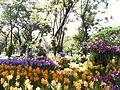 Suan Luan Park - panoramio - carbon60 (1).jpg