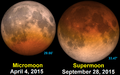 Supermoon lunar eclipse 2015.png