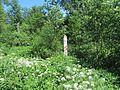 Suvieko sen., Lithuania - panoramio (1).jpg