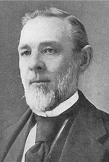 Swante M. Swenson American Lutheran minister