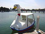 Swan boat at Ohori park.jpg