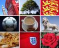 Symbols of England.png