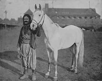 A black-and-white photograph of a man holding an unsaddled light gray horse