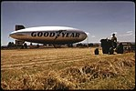 THRESHING AT THE PIERSON PARK AIRFIELD, GOODYEAR BLIMP IN BACKGROUND - NARA - 548014.jpg