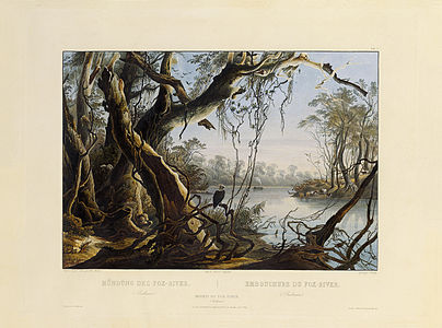 Mouth of Fox River (Indiana) by Karl Bodmer 1839