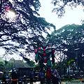 Taman Transformer Bandung.jpg