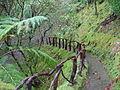 Terra Nostra Gardens (24468584062).jpg