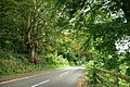 The Ballylesson Road, Belfast (6) - geograph.org.uk - 1514790.jpg