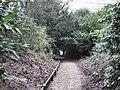 The Bateman Walk through the Tranquillity Gardens - geograph.org.uk - 1715357.jpg