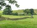 The Heugh, Eastby, Yorkshire - geograph.org.uk - 94599.jpg