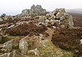 The Stiperstones - geograph.org.uk - 1111765.jpg