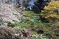 The Weir a National Trust Garden (447320754).jpg