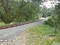 The Welsh Highland Railway near Nantmor - geograph.org.uk - 1313224.jpg