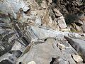 The last puddles in Molino Basin - Flickr - treegrow.jpg