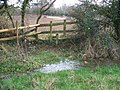 The path is a little wet - geograph.org.uk - 1603293.jpg